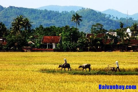 don ve lang - Phân tích bài thơ Dọn về làng của Nông Quốc Chấn