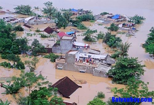canh lu lut que em - Tả cảnh lũ lụt ở quê em