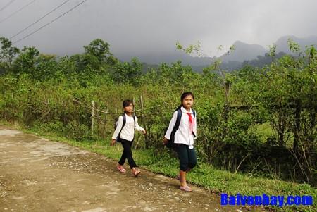 Hãy miêu tả con đường từ nhà đến trường