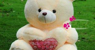 ta con gau bong yeu thich 310x165 - Tả gấu bông mà em yêu quý nhất