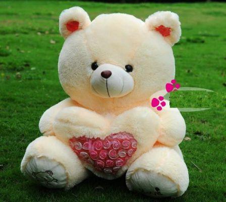 ta con gau bong yeu thich - Tả gấu bông mà em yêu quý nhất