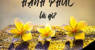 hanh phuc la gi hanh phuc co thuc su 310x165 - Suy nghĩ về ý kiến Mỗi người đều có quyền lựa chọn cách sống của mình miễn là hạnh phúc